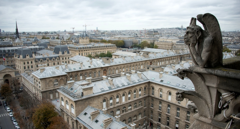 Paris Gargoyle by Nick Stafford